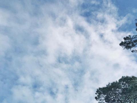 漫游新西兰,霍比特村真实电影现场,不是魔戒迷也可以去凑热闹