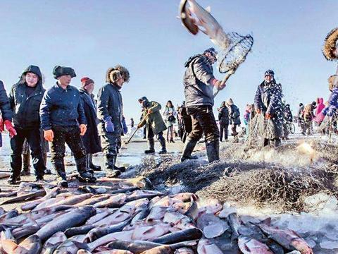 查干湖头鱼再拍天价:差一元100万,网友:这买鱼是不是疯了!