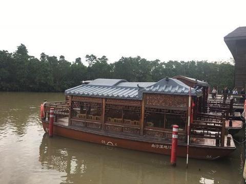 """广州南沙湿地公园有""""广州 之肾""""、珠三角""""留鸟天堂""""的美誉"""