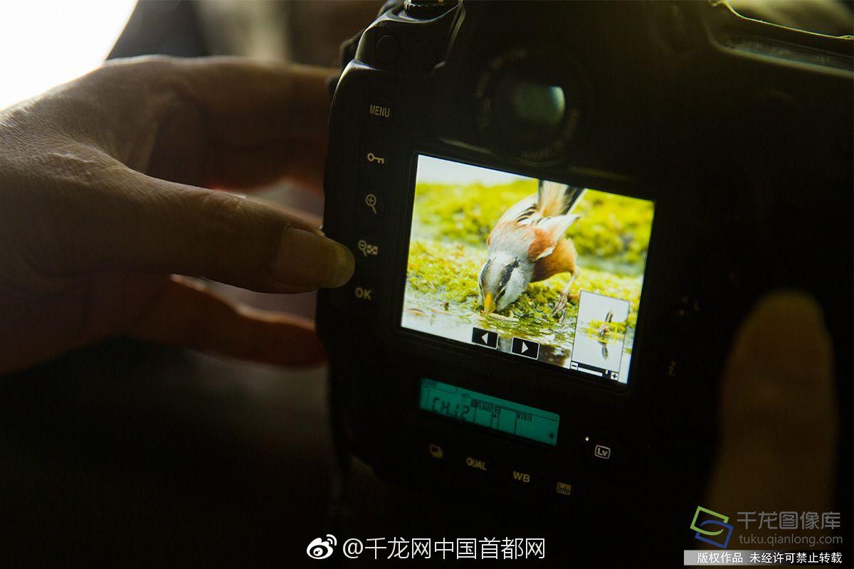 【最大澳门赌场直营】美图大甩卖 蔡文胜谋新局