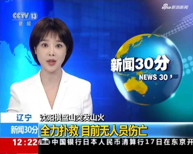 《新闻30分》辽宁:沈阳棋盘山突发山火 全力扑救  目前无人员