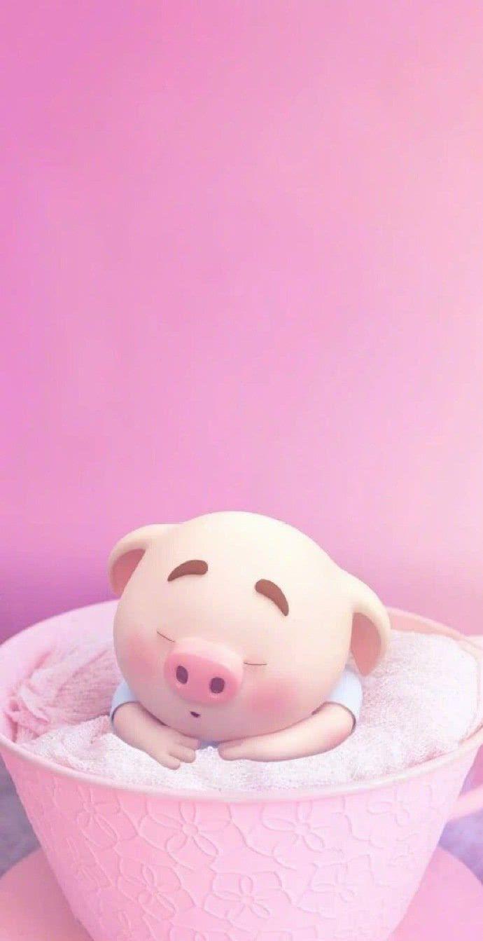今天给大家推荐的是2019年最可爱的猪猪壁纸哦,换上了之后福气满满哦