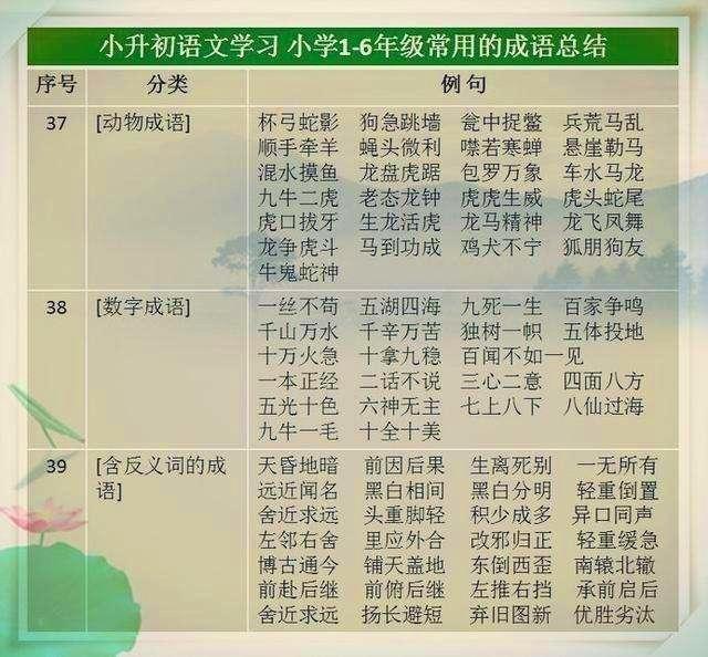 班主任说:孩子死磕9张图47类500个成语,小升初语文成绩定在95+