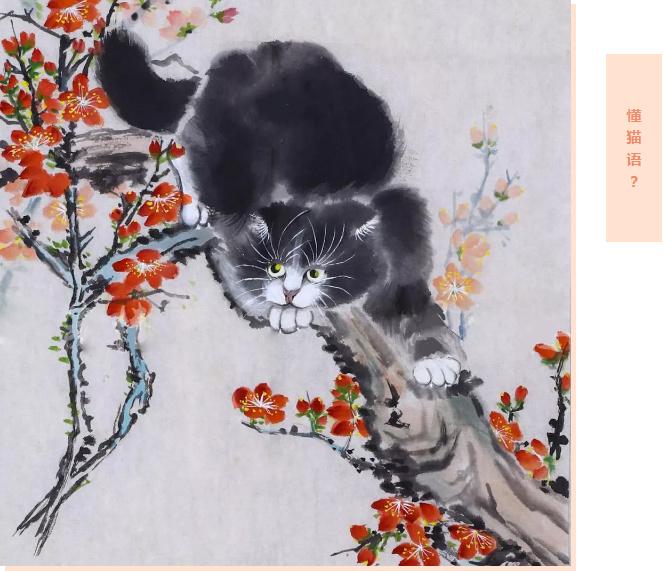 【奇闻轶事】猫闻伴呼归家来