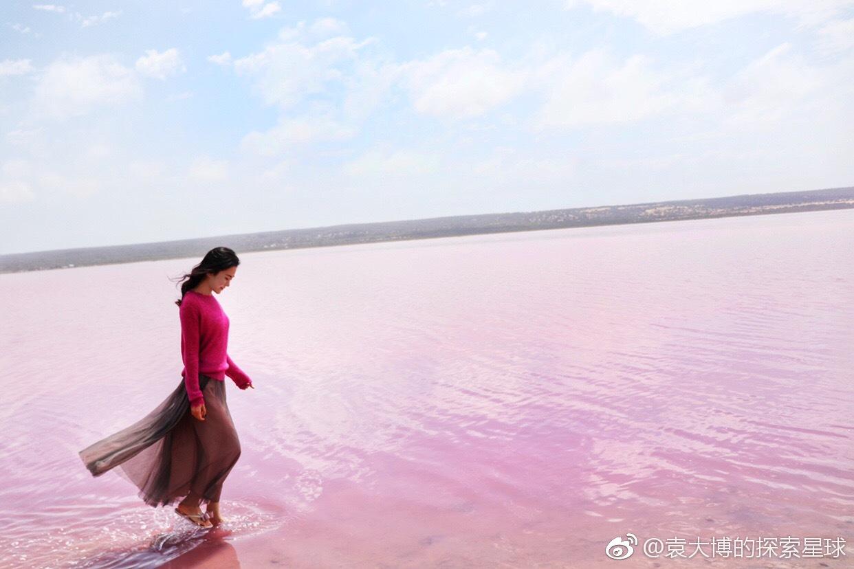 赫特泻粉红湖,上帝遗落的小玫瑰