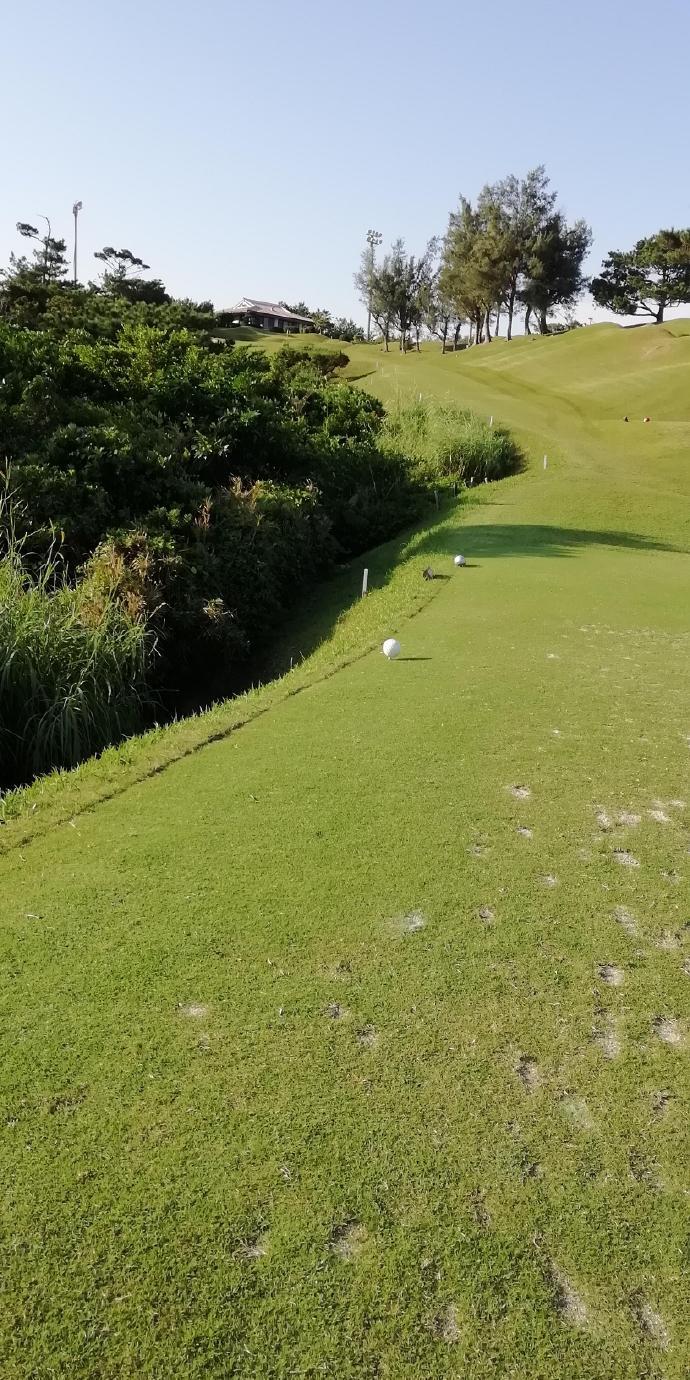 高尔夫球场之一