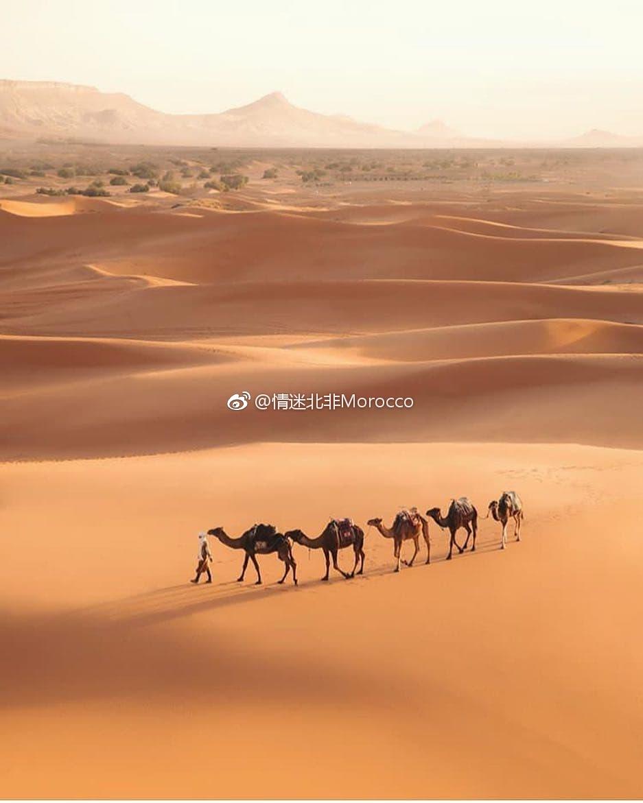 春节去摩洛哥度假 去迷人的撒哈拉沙漠感