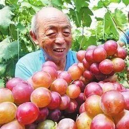 喜讯!萍乡这5个村镇上榜国字号名单 有你家乡吗?