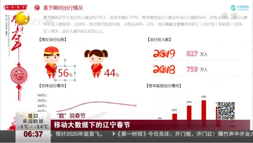 移动大数据下的辽宁春节
