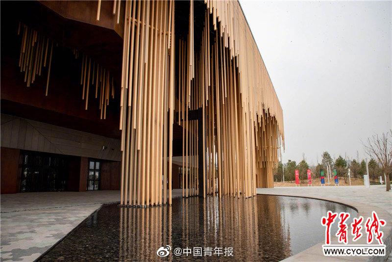 来自中国的IBM年轻工程师生日当天枉死美国街头