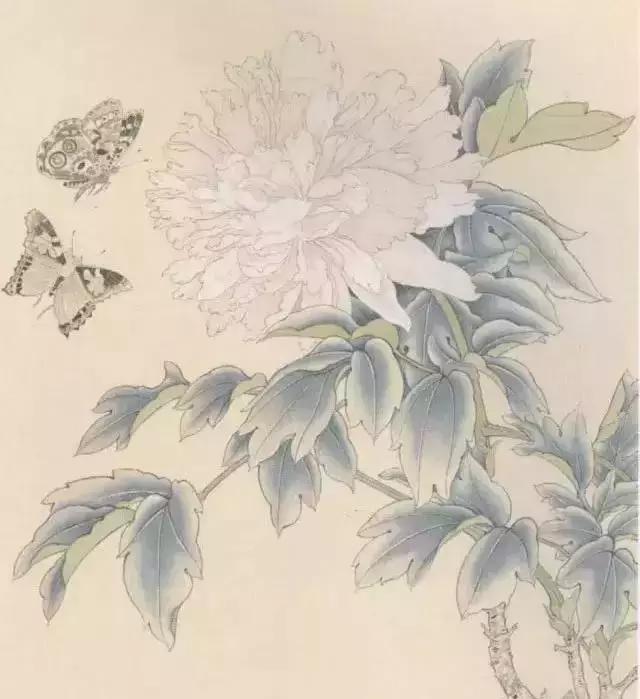 工笔花鸟入门教程:工笔画蝴蝶绘制步骤