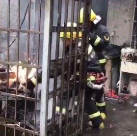 抚州消防员承认怕了 却意外收获了数十万个赞