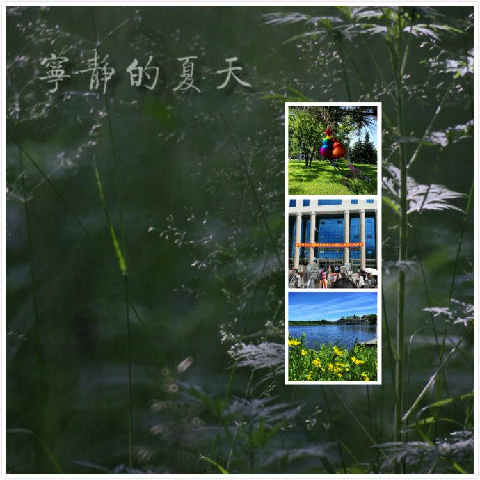 #一城一夏#鹤岗宁静的夏天