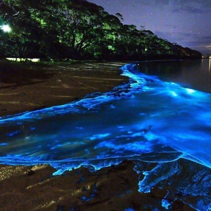 想和心爱的人去一次马尔代夫Vaadhoo岛
