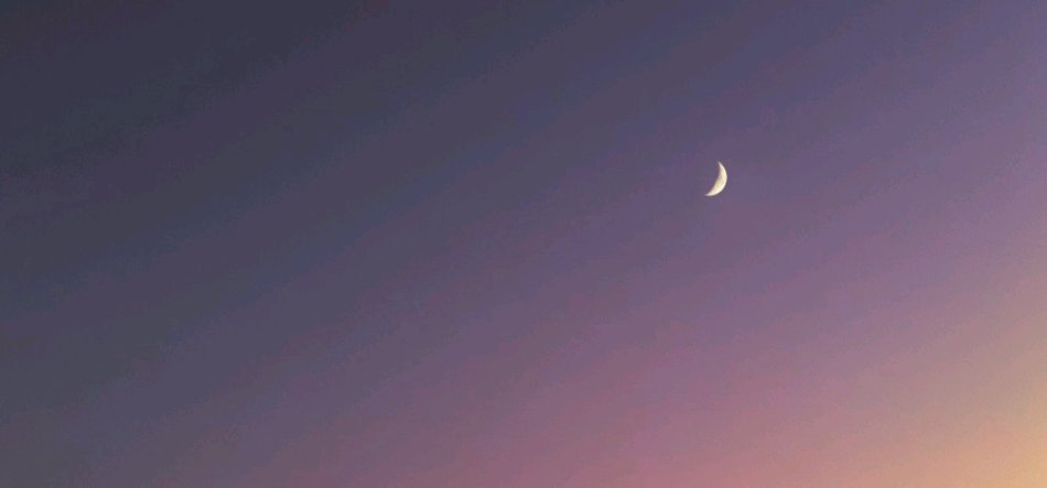 月亮与六便士:你想做个什么样的人