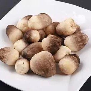 桂林一家三口被一盘蘑菇放倒!严重的进了重症监护室