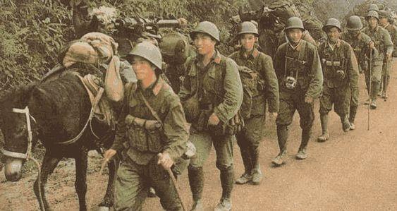 1979年中越战争烈士_为何中越战争后,越南就老实了?因为他们少了一样东西