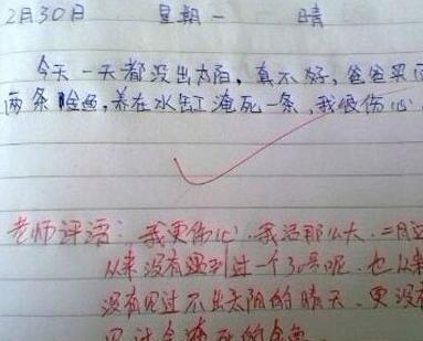 简直太逗了!盘点那些搞笑的小学生作文