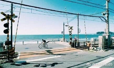 日本 江之岛/镰仓,永远的灌篮高手