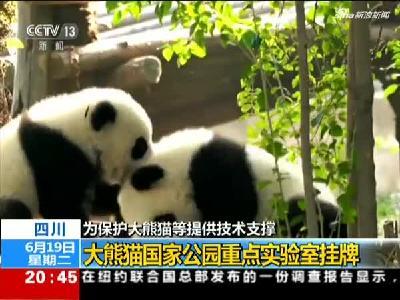 四川:大熊猫国家公园重点实验室挂牌