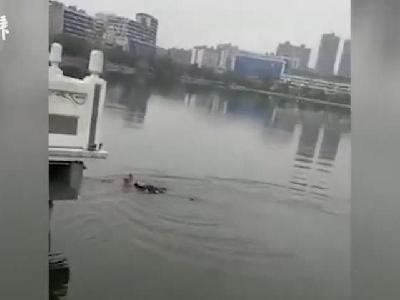 71岁京剧票友在湖边排练 见有人落水立马跳湖施救