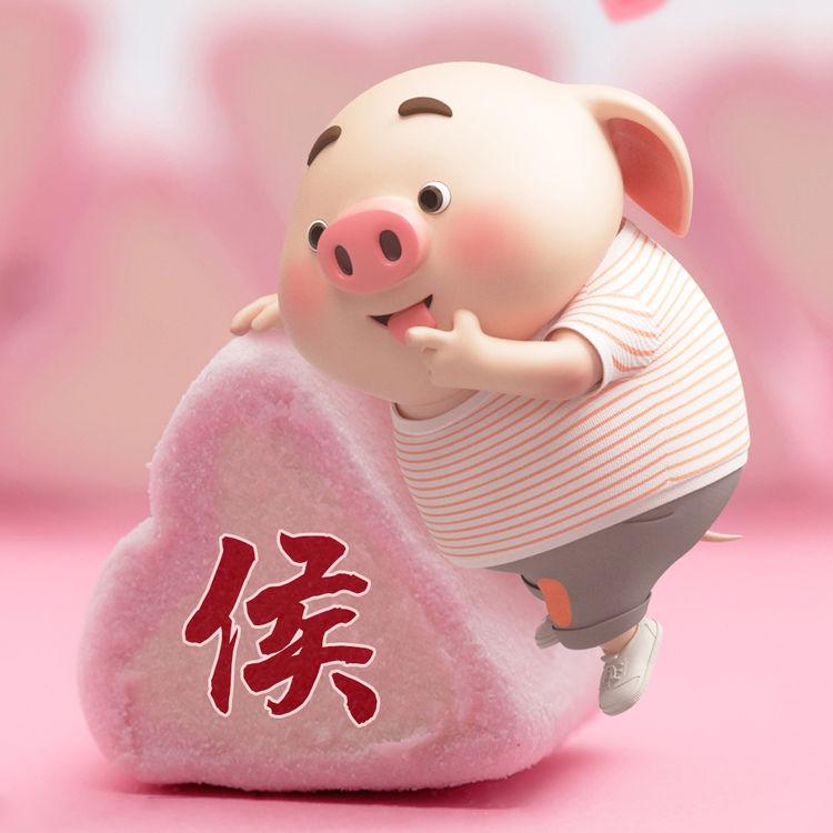 最可爱的猪年姓氏头像,猪猪女孩的最爱,拿去送人吧