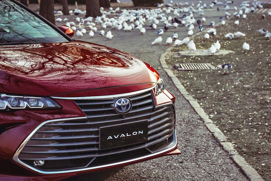 试驾一汽丰田亚洲龙 丰田这次给出了一个足以让人满意的答卷!