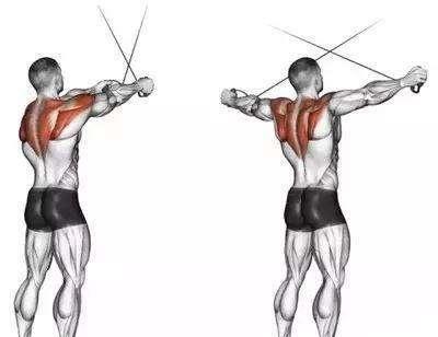 2.拉力器直臂下压
