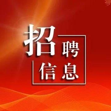 长春新区14个学校招聘教师、校医405人