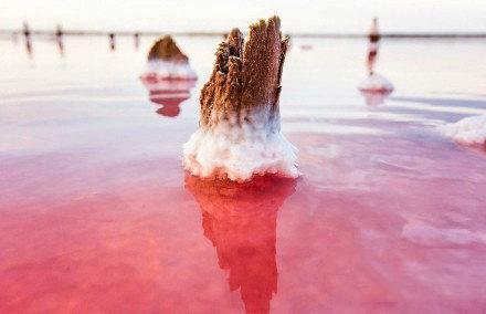 乌克兰克里木半岛,美丽迷人的盐湖