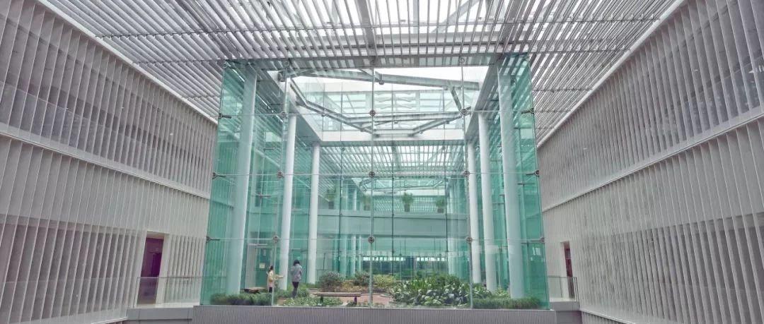浦东图书馆明年1月1日开馆 揭秘最新亮点