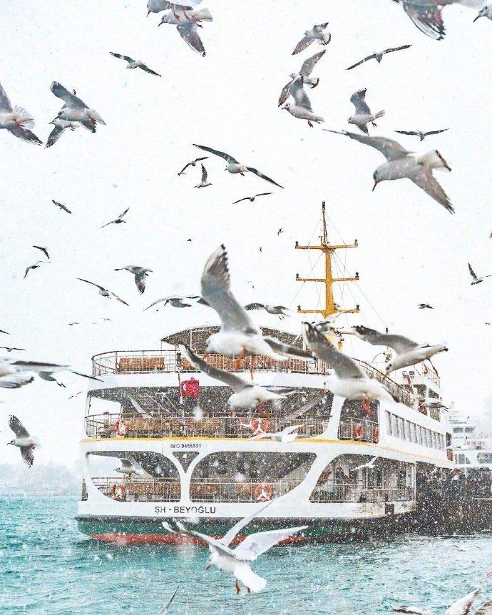 冬季的伊斯坦布尔