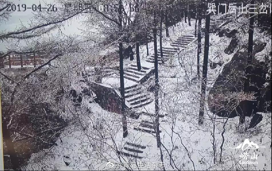 四月奇观崂山巨峰雪纷纷