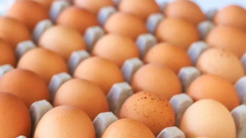"""沈阳鸡蛋价格""""破5"""" 涨价的原因竟是因为这个"""