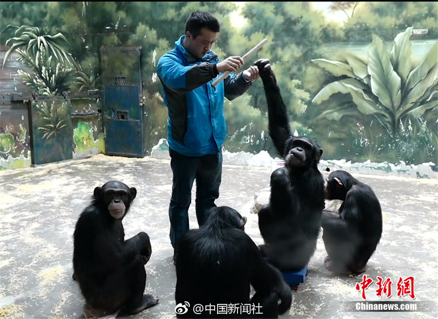 世界地球日 中国好声音