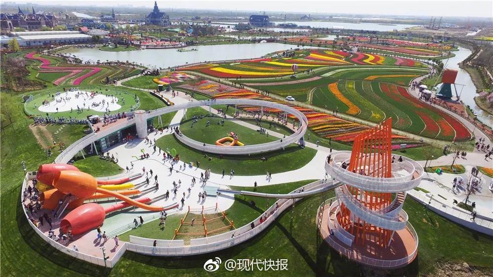 北京蔬菜供应如何?记者探访:供货足、卖得快、价格微涨