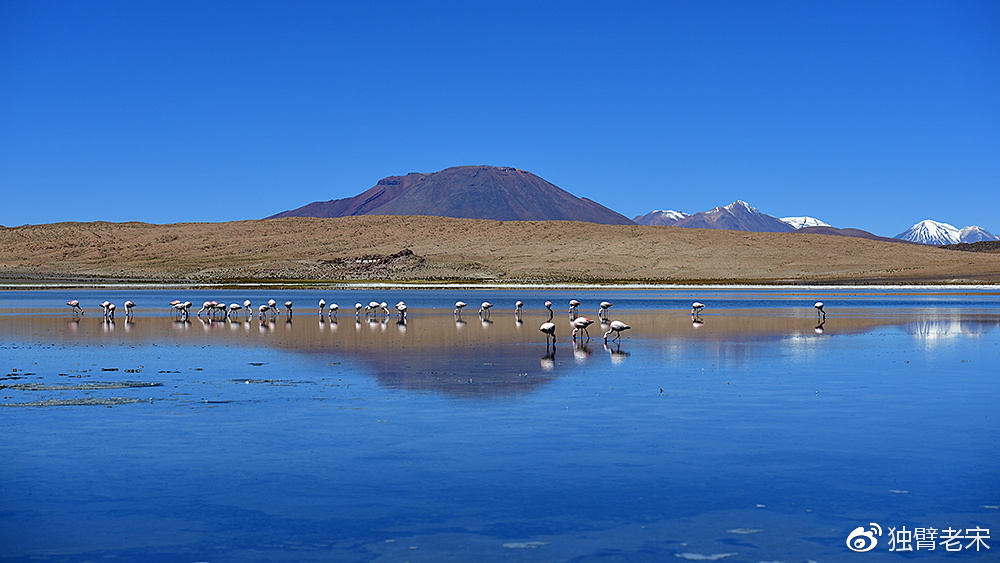 乌尤尼盐湖沙漠环行记