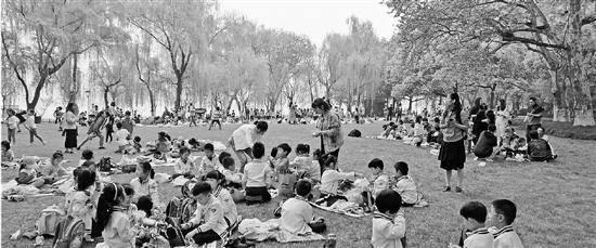 杭州柳浪闻莺大草坪上春游开放 预约电话首次公布