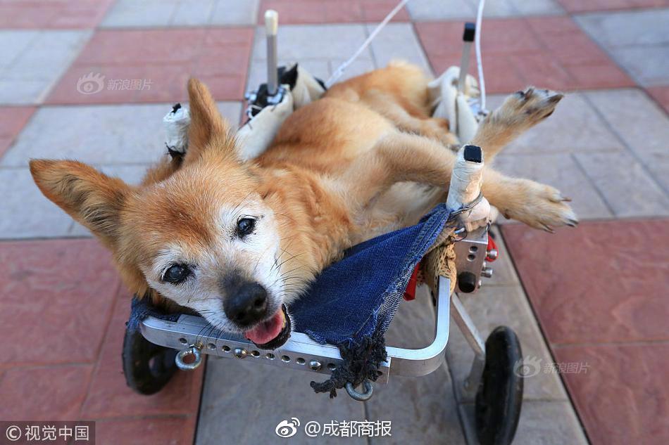 disability platform lift