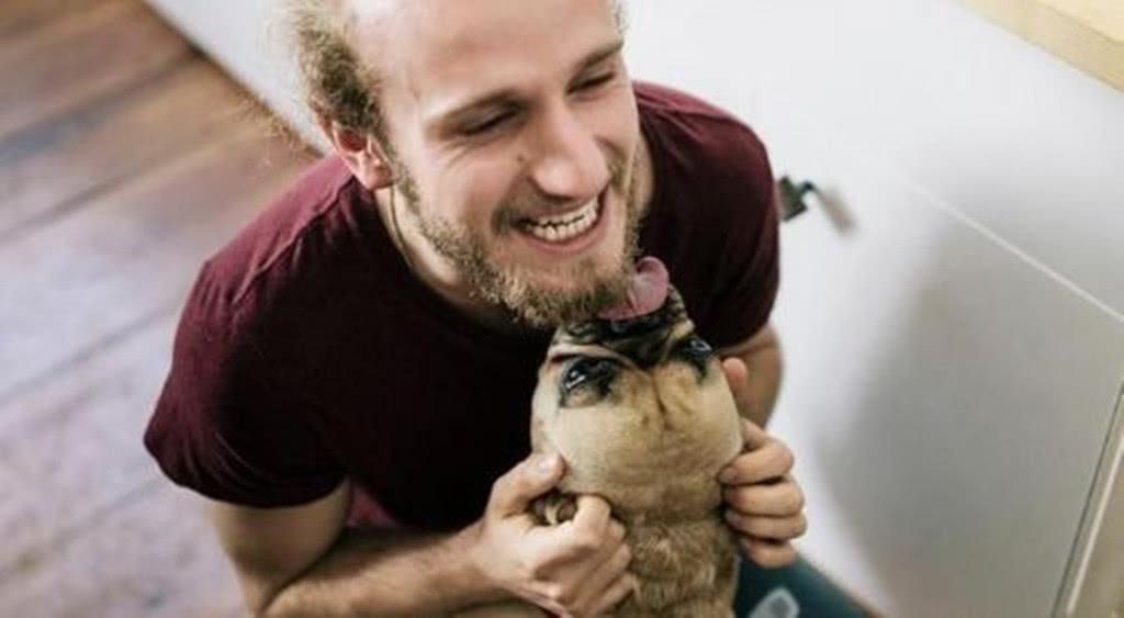 狗狗这样就是向你表示友好?