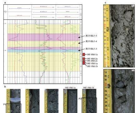 南海天然气水合物的勘察有了新的理论、方法和技术体系