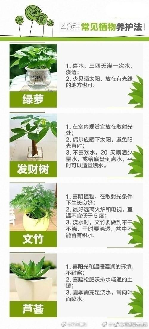 转变发展方式推动长江经济带高质量发展