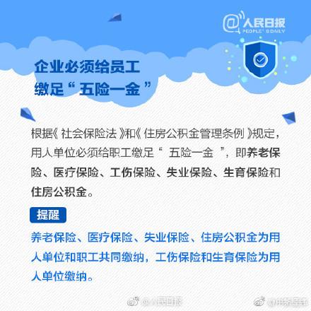 字段命名可以包含汉字字母,数字空格或其他字符