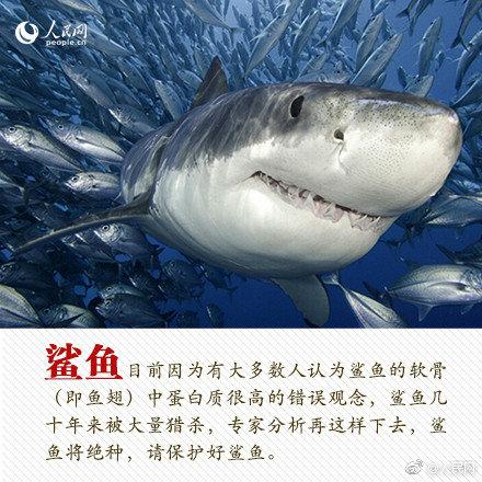 消息称港交所批准京东香港上市申请