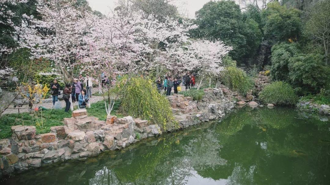 盘点上海十大值得一逛的老公园 有美景有传奇