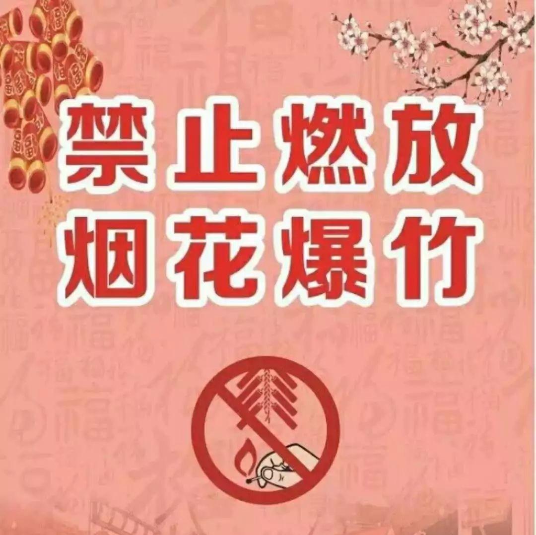 """守护""""萍乡蓝""""今年过节不放鞭炮!我承诺 我倡议!"""