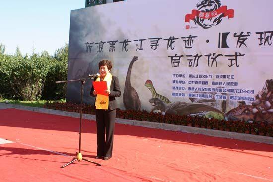 中共嘉荫县委常委、宣传部部长董丽女士
