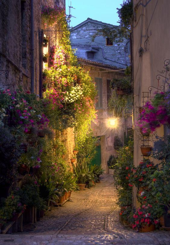 Spello——意大利斯佩罗小镇-最古罗马的小镇