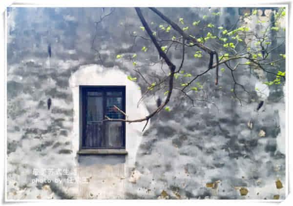 2。苏式生活 私享<a href='http://travel.sina.com.cn/suzhou_zhuozhengyuan-lvyou/?from=b-keyword' target='_blank'>拙政园</a>