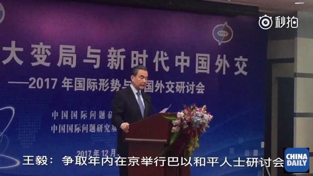 王毅:争取在年内在京举行巴以宁静人士钻研会